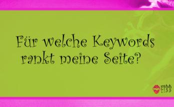 Für welche Keywords rankt meine Seite?